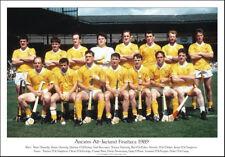 Antrim All-Ireland Senior Hurling Finalists 1989: GAA Print