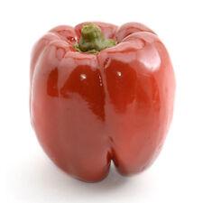 """Artificial Bell Pepper - 3-1/2""""Diam.x3-1/2 34;H., Green"""