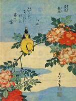 PAINTING ANIMALS BIRD YELLOW FINCH FLOWERS JAPANESE JAPAN FINE ART PRINT CC505