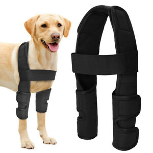 Black Dog Front Leg Brace Compression Injury Wounds Wraps Joint Elbow Protector