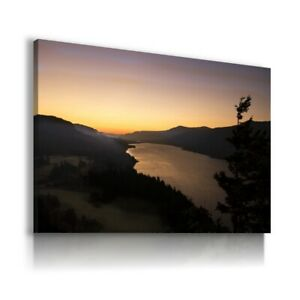 TREES FOREST SPRING MOUNTAINS CANVAS WALL ART LN410 UNFRAMED-ROLLED