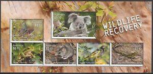 AUSTRALIA 2020 BIRDS BUTTERFLIES REPTILES KOALA WILD WILDLIFE RECOVERY [#2001]