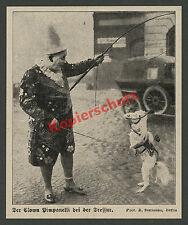 R. Sennecke Zirkus Clown Pimpanelli Dressur Pferd Artist Straße Auto Berlin 1928