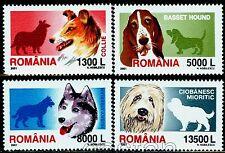 2001 Dogs,Husky,Shepherd,Basset,Collie,Hunde,Chiens,Cani,Romania,Mi.5574,MNH