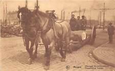 More details for br104994 corporations horses anvers belgium antwerpen