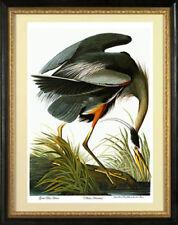 Audubon Great Blue Heron 22x30 Hand Numbered Ltd. Edition Fine Art Print