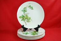 Edwin Knowles GRAPEVINE Dinner Plates Set of 6  #X22460
