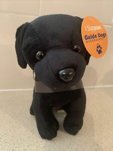 Guide Dogs Queensland Plush Labrador Like New With Tags 20cm