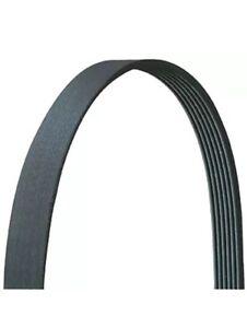 Drive-Rite 5040305DR Serpentine Belt