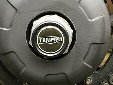 TRIUMPH SPEED TRIPLE R 1050 REAR SPINDLE AXLE PLUG CAP BUNGS 2016 LH Triumph
