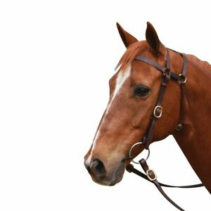 Showcraft - Extended Head Barcoo Bridle