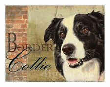 Border Collie Dog Art Print Poster-Smooth Collie-Vintage Series Wendy Presseisen