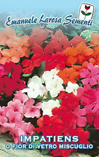 40 Semi/Seeds IMPATIENS o Fiori di Vetro mix