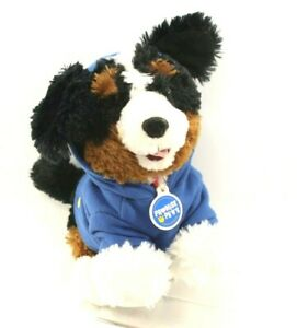 Build-A-Bear BAB Promise Pets Bernese Mountain Dog Plush w/Collar, Tag, & Hoodie