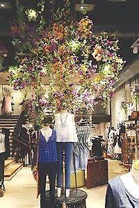 MVS Treasures Shop