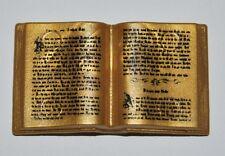 66080 Libro dorado playmobil,book