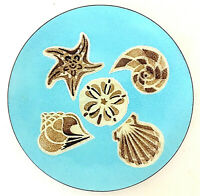 "Annemarie Davidson Enamel on Copper Plate 7.5"" diam Blue w/ Brown Sea Shells EUC"