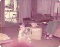 1970's Dog And Family FOUND PHOTOGRAPH Color Original Snapshot VINTAGE 910 1 C