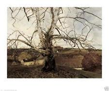 Andrew Wyeth Pennsylvania Landscape Farm Tree Scenic Poster Print 30x25