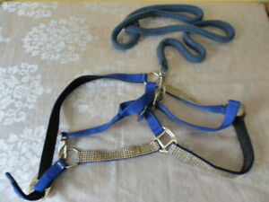 Equestrian Horse riding Gallop Horse reins Blue Bling leading rope