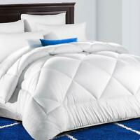 TEKAMON All Season Twin Comforter Winter Warm Soft Quilted Down Alternative Duve