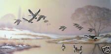 Jim Lamb  ''Morning Rising''   S/N L/E