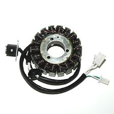 17406 ELECTROSPORT Statore SUZUKI DL V-Strom 650 (04-06)