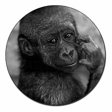 Baby Mountain Gorilla Fridge Magnet Stocking Filler Christmas Gift, AM-5FM