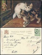 GB KE7 1908 PPC CATS CHRISTMAS DAY POSTMARK WIMBLEDON