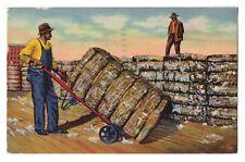 Black Americana postcard moving Cotton bales