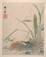 Chinese Paintings: Dragonfly and Frog on Pond by Xiang Shengmo - Fine Art Print