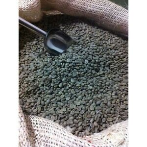500G Raw Colombia Excelso Arabica Green Coffee Beans for home roaster