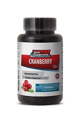 Cranberry Concentrated Extract 50:1. Healthy Urinary Tract Best Pills (1 Bottle)