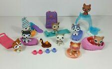 Littlest Pet Shop #37 39 69 70 210 341 358 Puzzle Lot 9 Husky Dogs Accessories