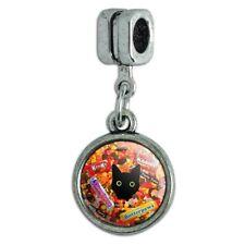 Halloween Black Cat Hiding in Candy  Italian European Style Bracelet Charm Bead
