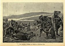 The English guns in the battle for nikolsons Net * Image document of 1900