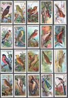 1915 Wills's Cigarettes British Birds Tobacco Cards Complete Set of 50