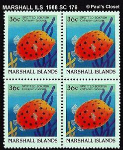 MARSHALL ILS 1988 SC 176 36¢ SPOTTED BOXFISH BLOCK MINT NEVER HINGED OG VFINE