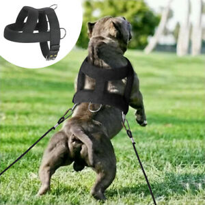 Large Dog Weight Pulling Harness Heavy Duty K9 Dog Training Harness Vest PitbulL