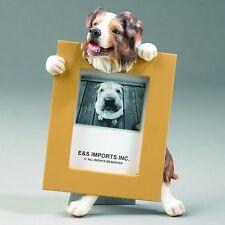 australian shepherd dog picture frame 15-53