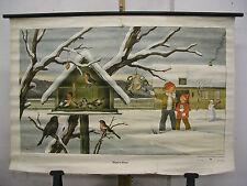 Schulwandkarte Wandkarte Vögel im Winter Vogel Schnee Kinder Futter 115x152 Bild