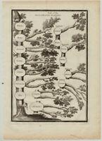 Philosophie STAMMBAUM Original Kupferstich um 1700 Mensch Tiere Definition