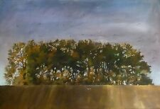 "ORIGINAL BRIDGET ASKEW ""Grandad's Wood"" Forest Meadow Landscape PAINTING"