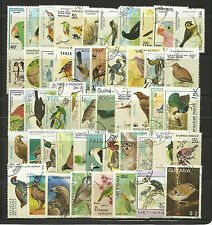 BIRDS Collection Packet of 100 Different WORLD Stamps