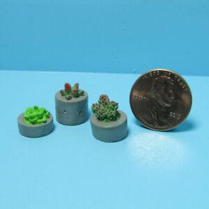 Dollhouse Miniature Succulent Plants Set of 3 HW4044