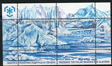 0370 SERBIA 2011 - Preserve The Polar Regions and Glaciers - MNH Suvenir Sheet