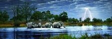 Elephant Puzzle 2000 Piece Heye Herd of Elephants Panoramic Panorama Jigsaw