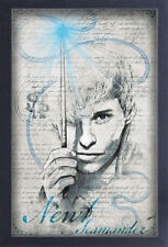 FANTASTIC BEASTS CRIMES OF GRINDELWALD NEWT DRAWING 13x19 FRAMED GELCOAT POSTER!
