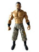 Davari WWE Jakks Deluxe Aggression Action Figure DA WWF Wrestler Wrestling Shawn