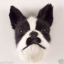 (1) BOSTON TERRIER DOG FUR MAGNET! SAVE BY BIDDING ON SEVERAL AUCTIONS!